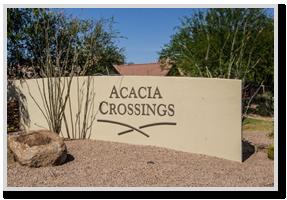 acacia-crossing
