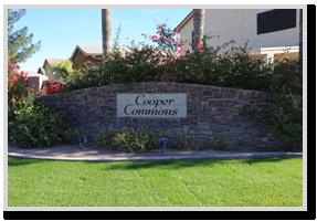 cooper-commons