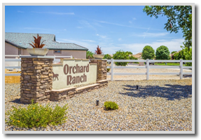 orchard-ranchettes