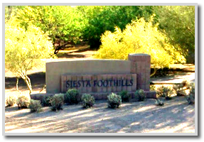 siesta-foothills