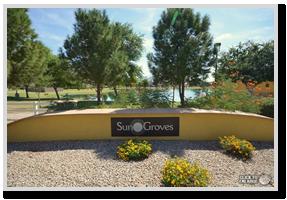 sun-groves