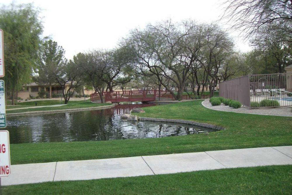 Community Pond 2