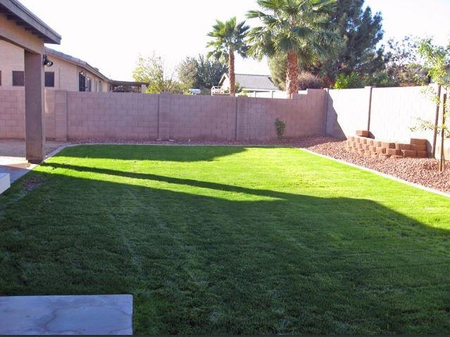 15 Backyard